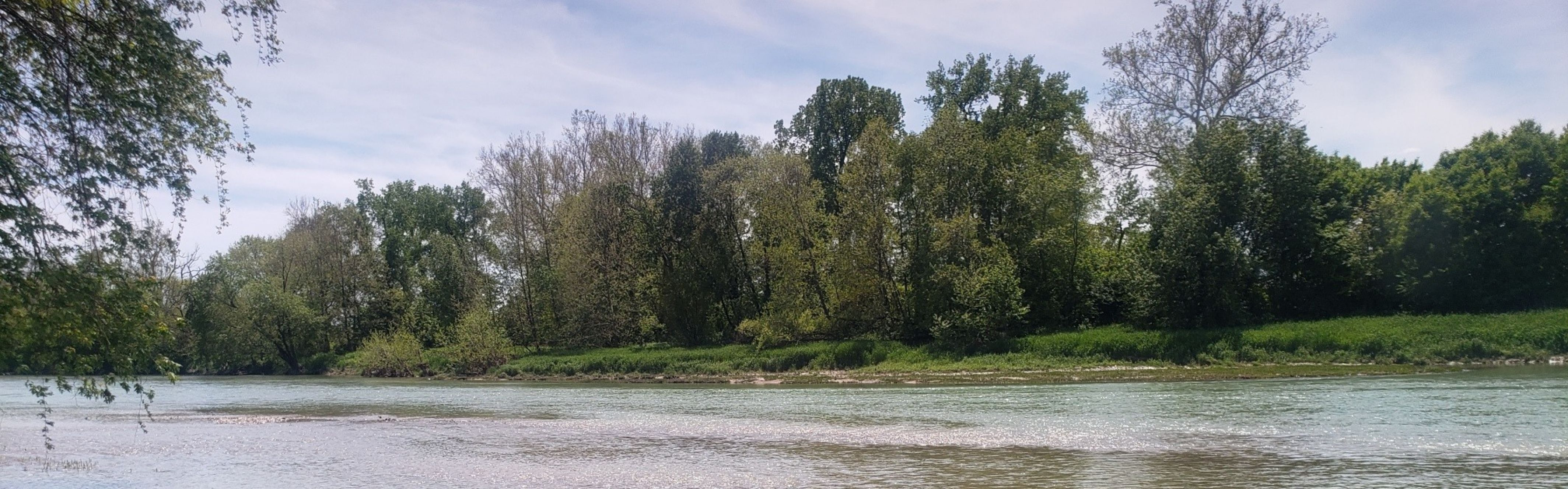 river, trees, and sky